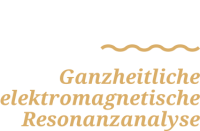 e-resonanz-logo